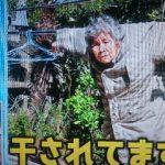 【ナカイの窓】89歳のカメラマン『西本喜美子』とは?自撮り写真が面白すぎるw放送内容まとめ